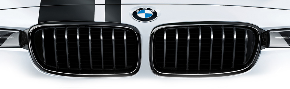M Performance Grilles
