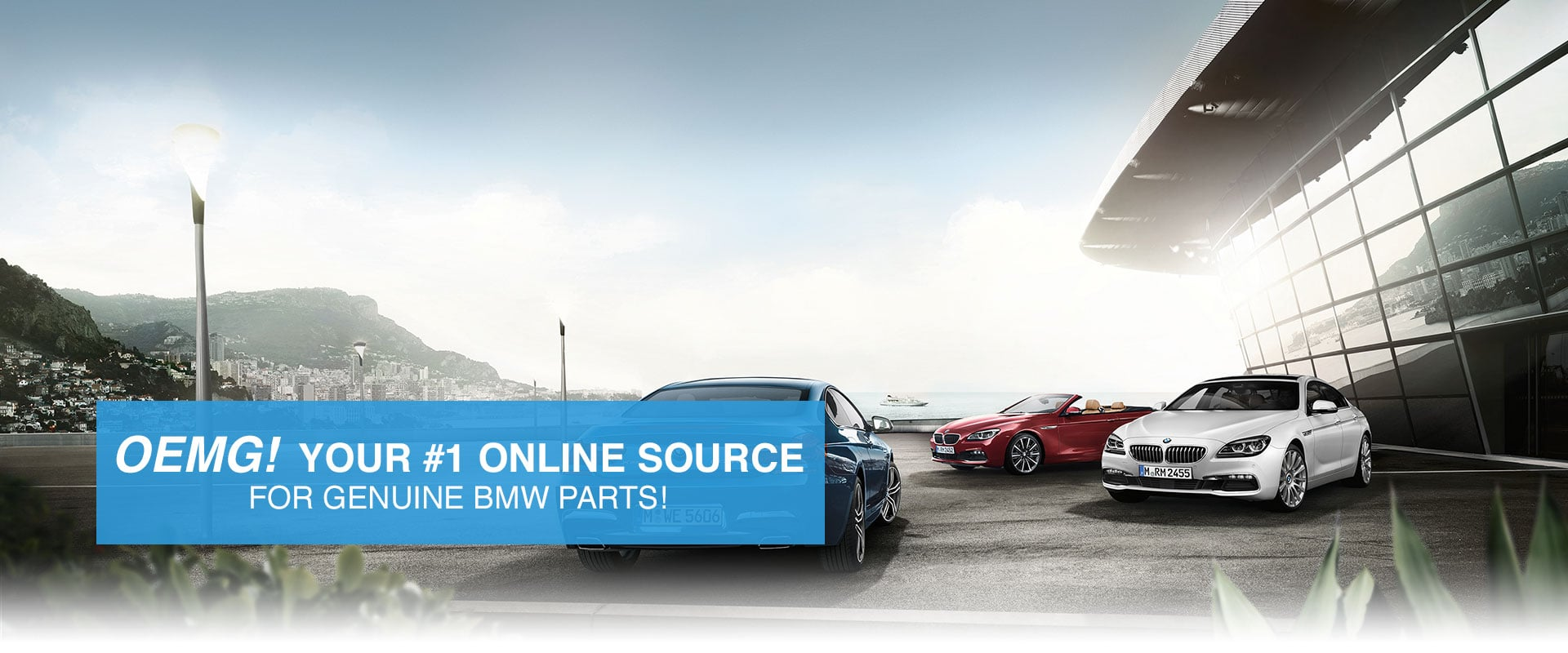 Genuine BMW Parts