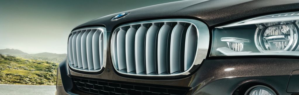 Genuine BMW Grilles